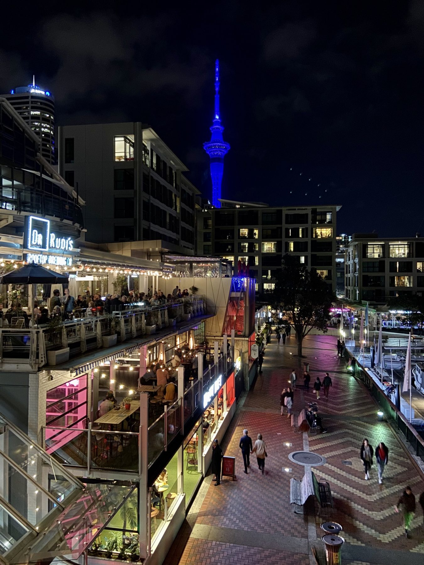 View of nightlife from Saint Alice - Viaduct Harbour - WhereToGo.co.nz