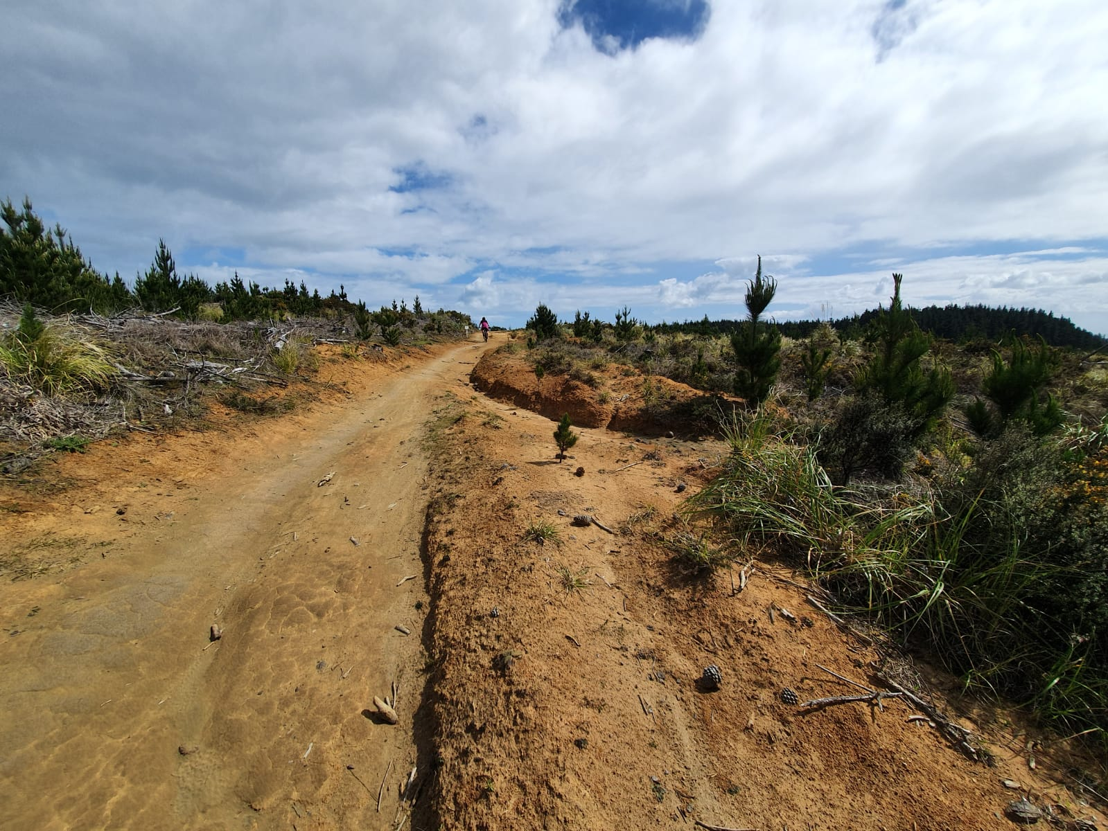 Woodhill Forest Park Mountain Bike Track